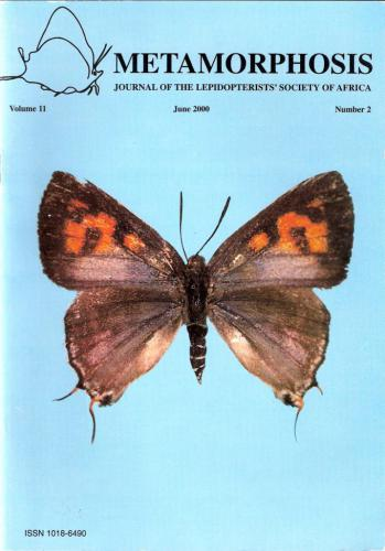 Metamorphosis Journal